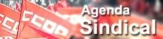 https://sites.google.com/a/ccoo.cat/fsc_sector_aeri/home/agenda-sindical